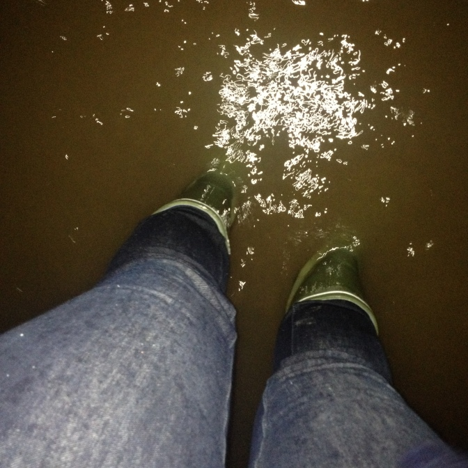 Water above my ankles in the back garden