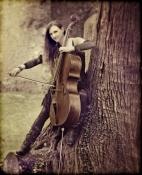 Ilse_tree