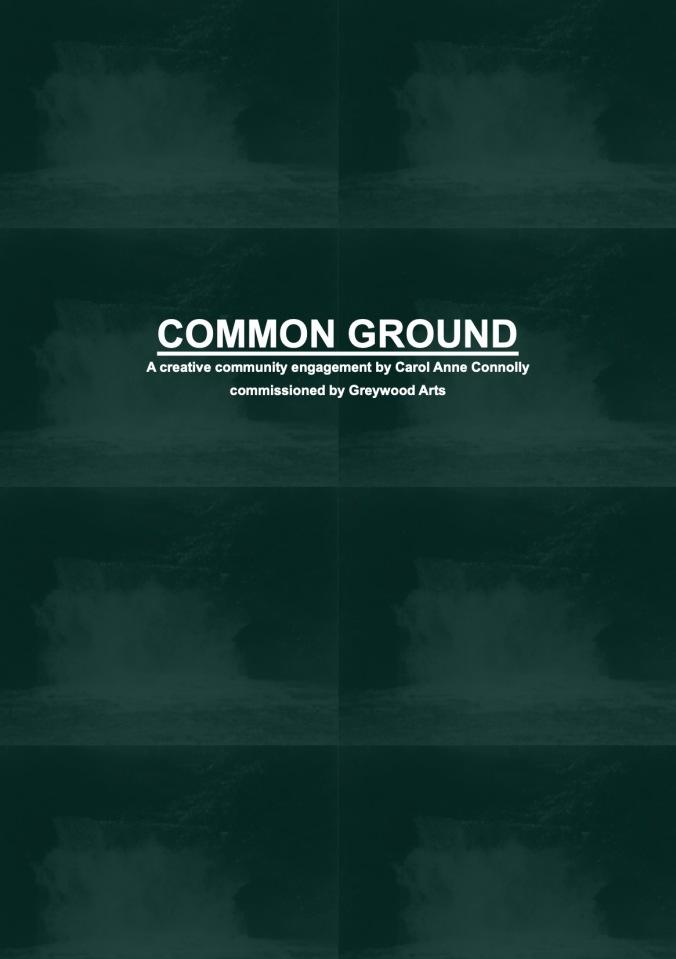 Common Ground Web 17